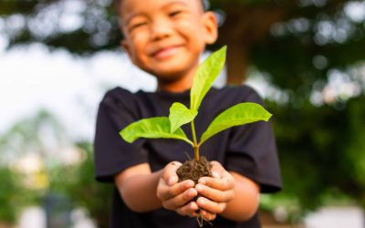 Veranstaltungstipp fürs Gärtnern in der Kita